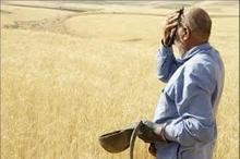 کشاورزان نباید دغدغه برداشت و فروش محصول داشته باشند