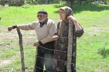 نرخ سالمندی در خراسان رضوی کمتر از میانگین کشوری است