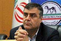 نشست هیات رئیسه سازمان جهانی اسب عرب در یزد برگزار می شود