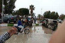 سیش در بندر دیر بوشهر
