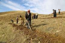 عملیات آبخیزداری در سنندج برای 120 نفر شغل ایجاد می کند