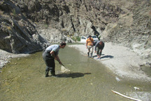 رودخانه های فصلی نیکشهر مورد سلامت اکولوژیکی قرارگرفتند