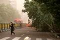 وزش باد شدید در پایتخت و ۵ استان دیگر   تهرانیها مواظب طوفان باشند