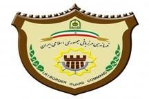 بازداشت 118 متجاوز مرزی در تایباد