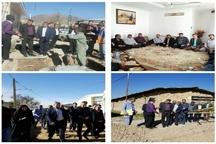 بازدید فرماندار آبیک  از روند اجرای طرح اگو در روستای زیاران
