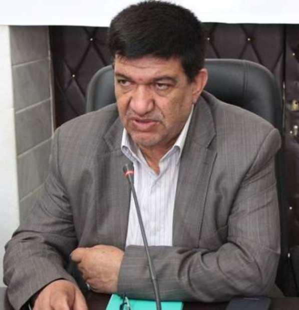 امنیت پایدار در جنوب استان کرمان محقق شده است