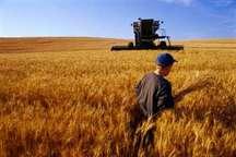 خدمات چهار ساله ای که کشاورزی کردستان را پیشتاز کرده است