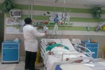 زن مارگزیده در الیگودرز از مرگ حتمی نجات یافت