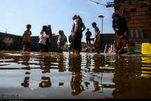 آمار گزش خزندگان در مناطق سیل زده آق قلا اندک است