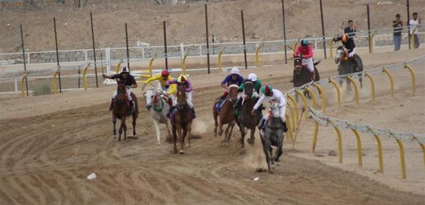 مسابقات اسب دوانی کورس بهاره کشور در یزد پیگیری شد