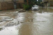 بارندگی شدید به امیریه دامغان خسارت زد
