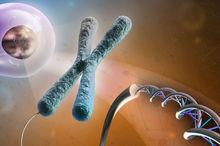 پژوهشگران مشهد تست تشخیص مولکولی ۲ بیماری را بومی سازی کردند