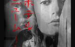 تصویر مهناز افشار روی پوستر فیلم کارگردان ژاپنی