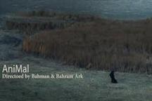 فیلم کوتاه «حیوان» به بخش مسابقه جشنواره سارایوو راه یافت