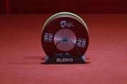 رستمی به مدال طلا دست یافت و رکورد جهان را زد
