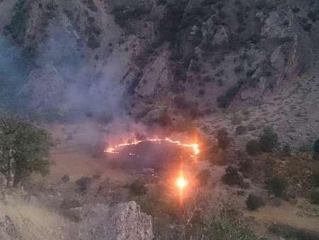 نیم هکتار از عرصه های طبیعی لردگان در آتش سوخت
