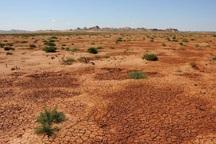 25 هزار هکتار از اراضی بیابانی البرز کانون ریزگرد داخلی است
