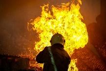 تلاش 30 آتشنشان برای اطفاءحریق مرکز پرورش دام در کرمان