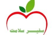 1800 دانش آموز کامیارانی سفیر سلامت هستند