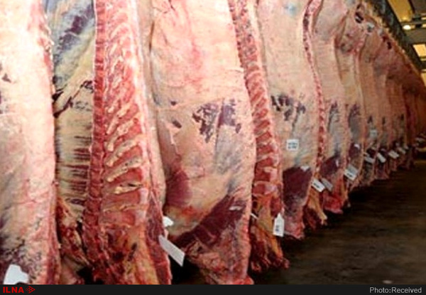 واردات ۲ هزار و ۷۰۰ تن گوشت قرمز به استان مرکزی
