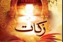 فردیس در زمینه جمع آوری زکات رتبه دوم البرز را کسب کرد