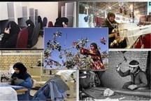 مقدمات ایجاد 95 صندوق خرد زنان روستایی در استان کرمان  فراهم شد