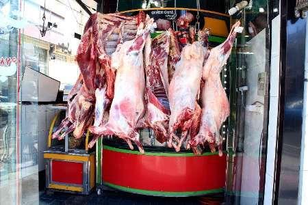 افزایش قیمت گوشت گرم گوسفندی ناشی از کمبود آن  نیست