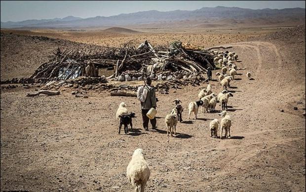 50 حلقه چاه در منطقه عشایرنشین شلیل اردل خشک شد