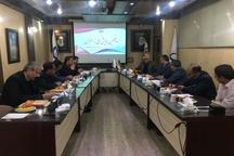 همایش ملی زعفران در تربت حیدریه برگزار می شود