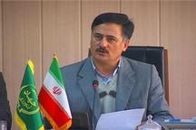 تولید 10 هزار تن پنبه از مزارع مناطق شمالی استان اردبیل