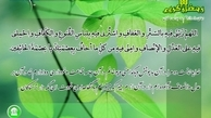 دعای روز دوازدهم ماه مبارک رمضان + صوت
