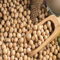 مواد خوراکی ممنوعه برای افراد مبتلا به میزان بالای استروژن