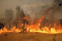 هشدار محیط زیست به آتش سوزی در جنگل ها و مراتع آذربایجان شرقی