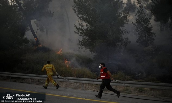 تصاویر/ آتش سوزی در سرزمین های اشغالی