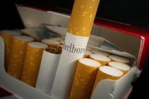 170 هزار نخ سیگارت قاچاق در یزد کشف شد