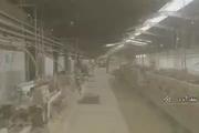 بازگشت کارگران کاشی اصفهان به کار