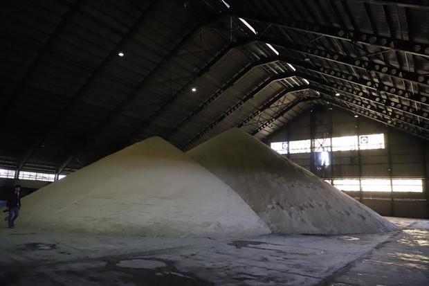 پانزدهمین دوره تولید شکر در کشت و صنعت سلمان فارسی شروع شد
