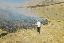 20 هکتار از مراتع شهرستان سنقر و کلیایی در آتش سوخت