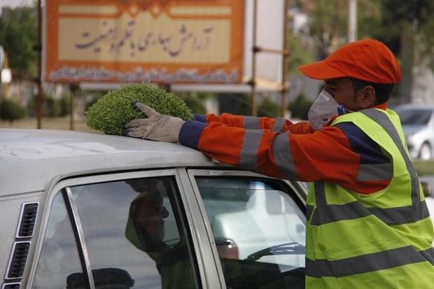 شهروندان شیراز در طرح جمع آوری سبزه مشارکت کردند