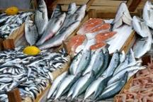 سالانه یک میلیون و 200 هزارتن ماهی در کشور تولید می شود