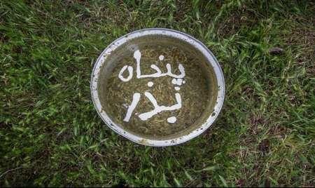 پنجاه بدر، آئین سنتی قزوینی ها برای شکرگزاری و طلب باران