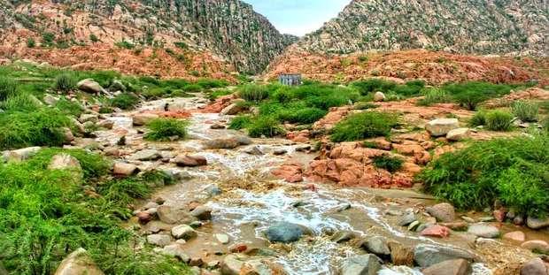 روی خوش طبیعت به کرمان پس از چند سال خشکسالی