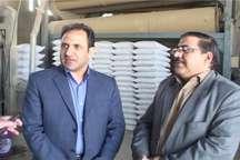 تولید سالانه 2 هزار تن بذر اصلاح شده در ملکان