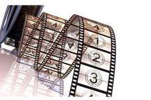 مستند پرنده نادر در پردیس سینمایی بهمن سنندج اکران شد