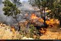 مهار کامل آتشسوزی منطقه چوار  علت حادثه اتصال در سیستم برق فشار قوی