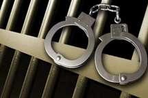 سارقان وسایل 138 خودرو در شیراز دستگیر شدند