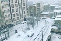 تهران برفی می شود