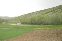 پنج هزار و 600 هکتار اراضی ملی اردبیل رفع تصرف شد