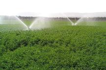 توسعه آبیاری نوین اولویت نخست بخش کشاورزی آذربایجان غربی است