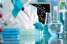 ایجاد مرکز تحقیقات داروهای گیاهی در دانشکده علوم پزشکی مراغه